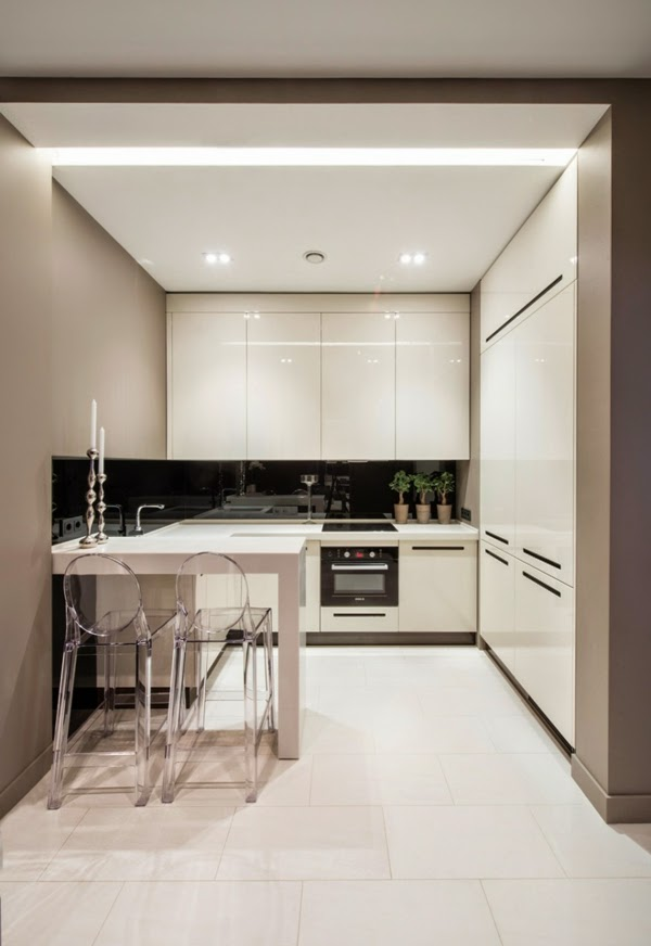 Elegant Modern Small Kitchen Design