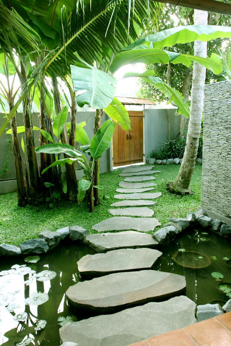 Merveilleux Tropical Patio Design Ideas